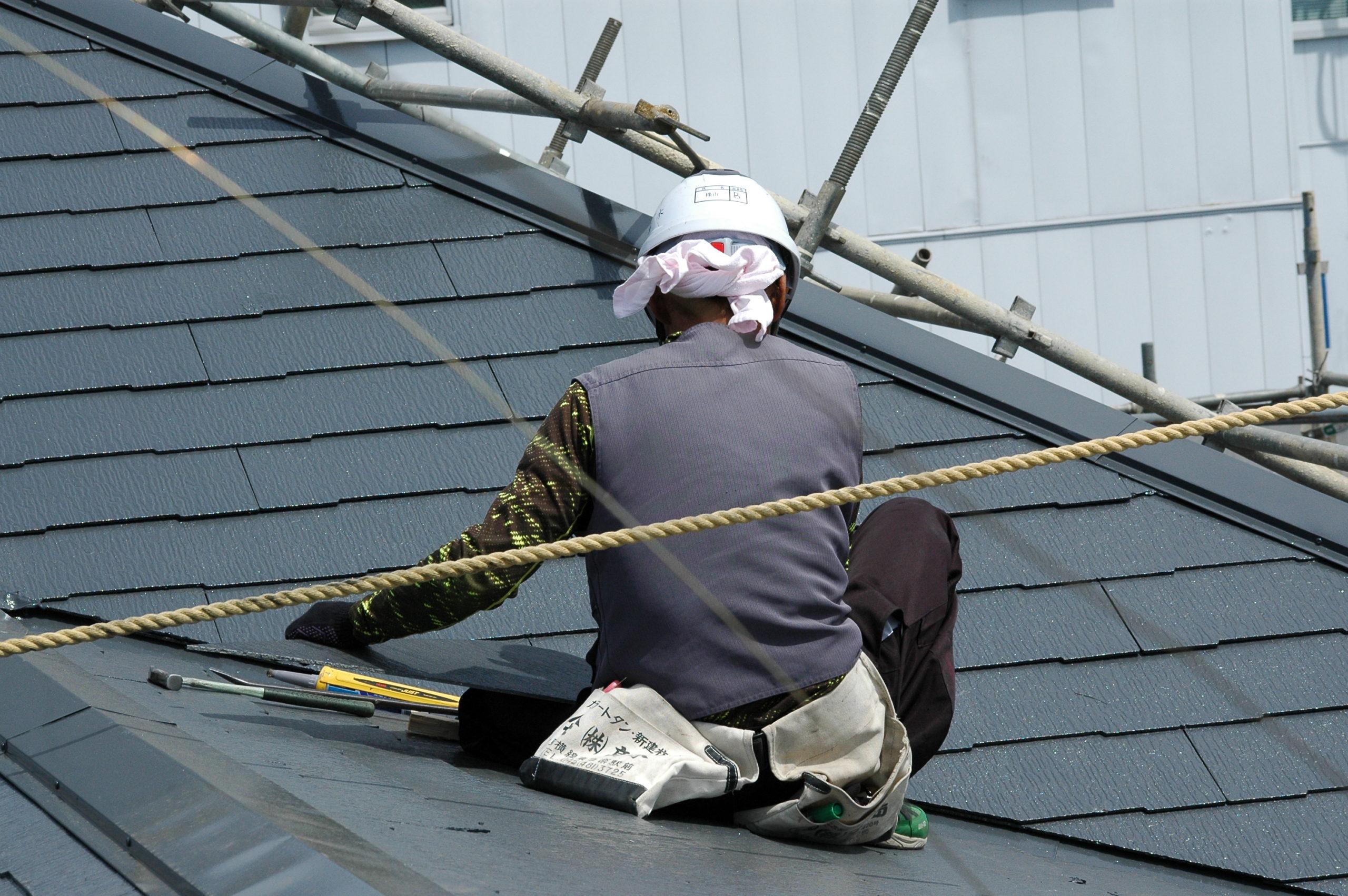 屋根の上のアスリート その2